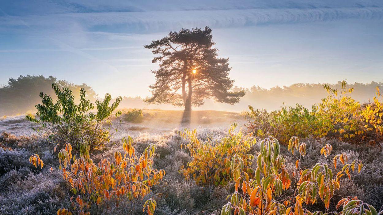 Afbeelding van Web Draait Door: landschapsfoto's van Albert Dros mét fotowedstrijd