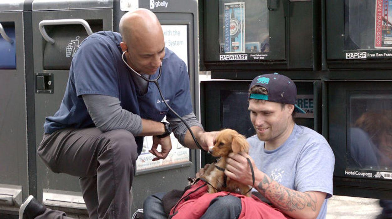 Afbeelding van Feelgood Friday: Dierenarts behandelt gratis dieren van daklozen