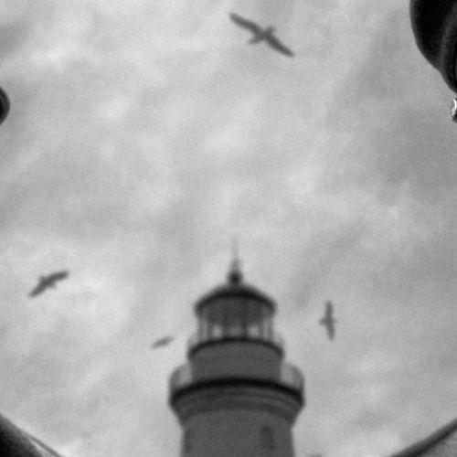 Afbeelding van The Lighthouse: horror zoals je het niet eerder zag